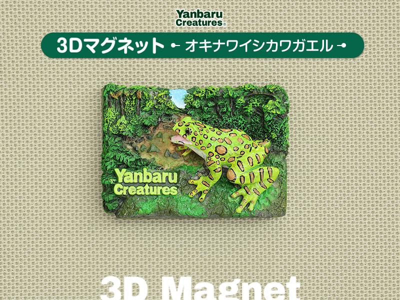 やんばるの生物 3D マグネット オキナワイシカワガエル