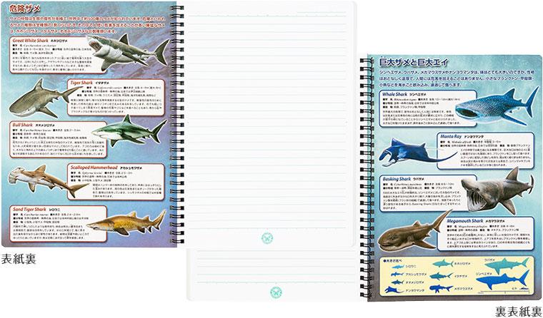 リングノート 生物情報
