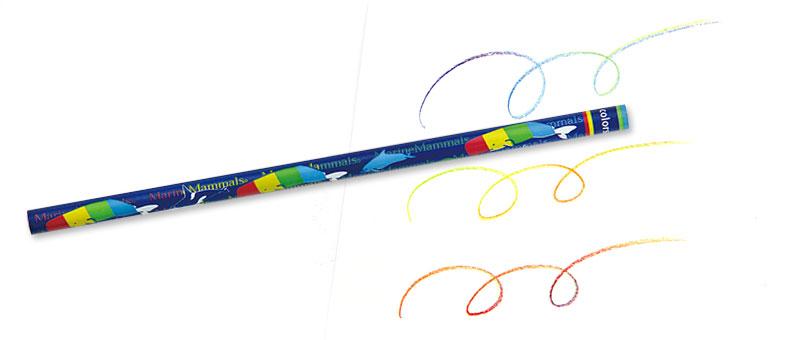 7色カラー鉛筆 海洋性哺乳類