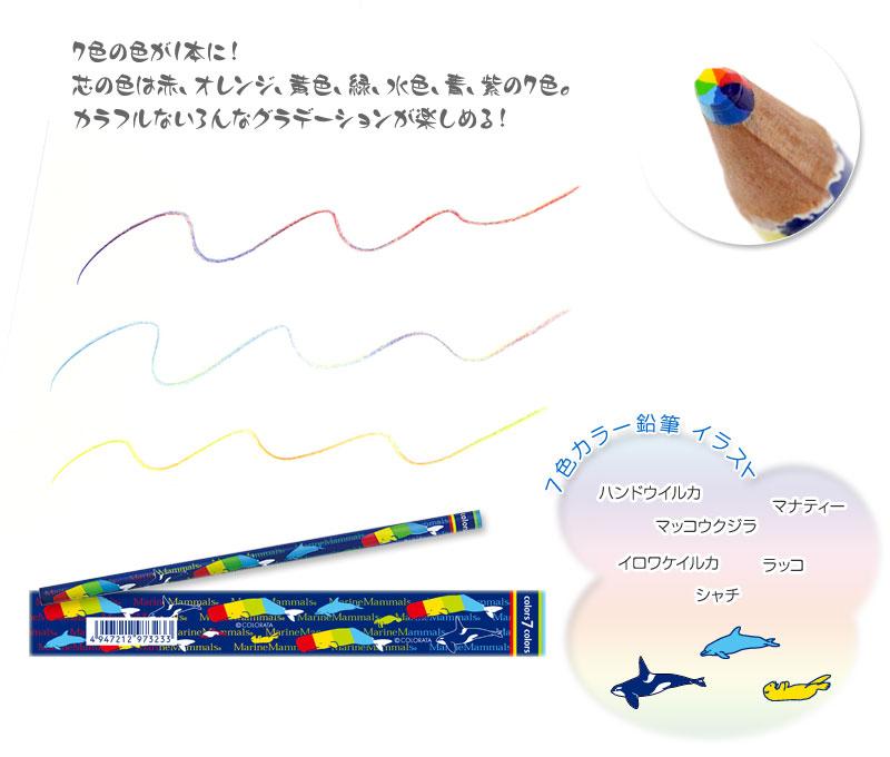 7色カラー鉛筆 海洋性哺乳類のイラスト