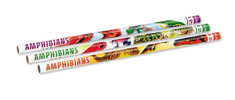 かきかた鉛筆3本セット2B両生類