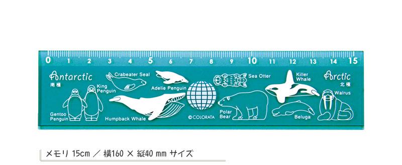 カラー定規15cm 北極と南極の動物