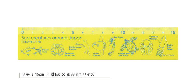 カラー定規15cm 日本近海の生物