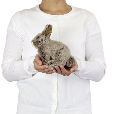 リアル動物ぬいぐるみ リアルアニマルベイビー ニホンノウサギ 大きさ