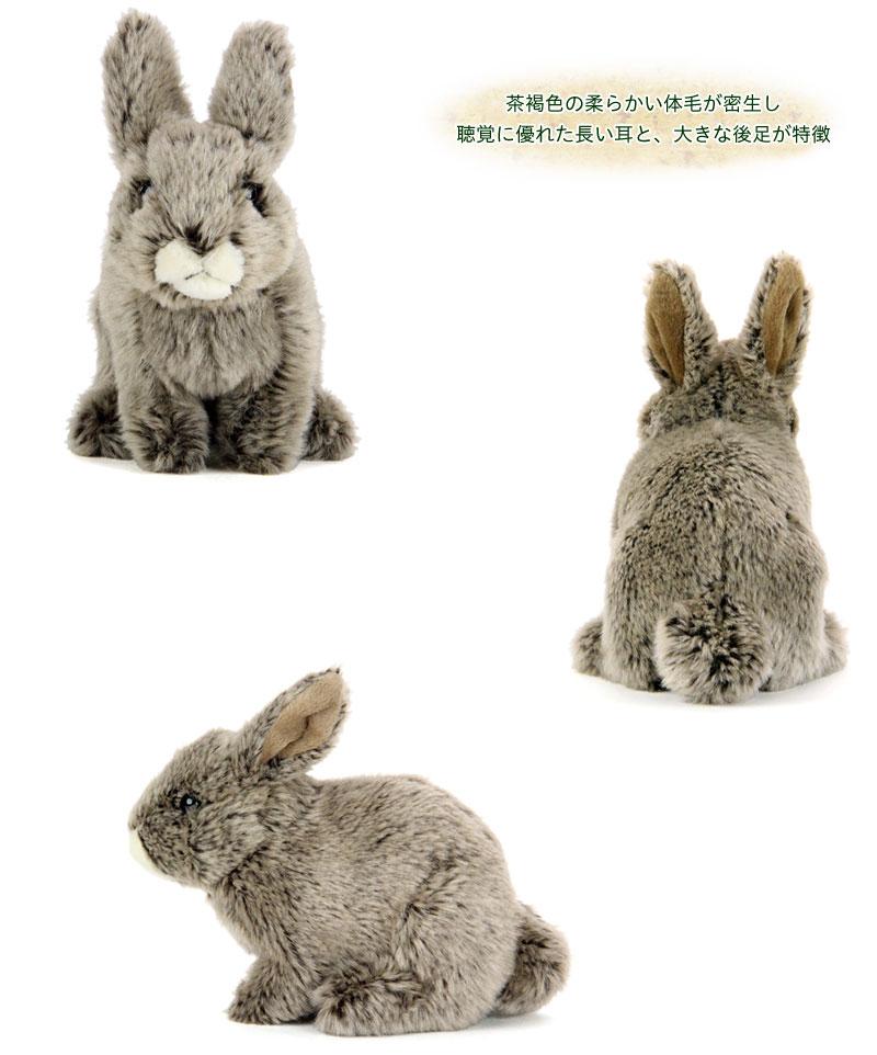 リアル動物ぬいぐるみ リアルアニマルベイビー ニホンノウサギ
