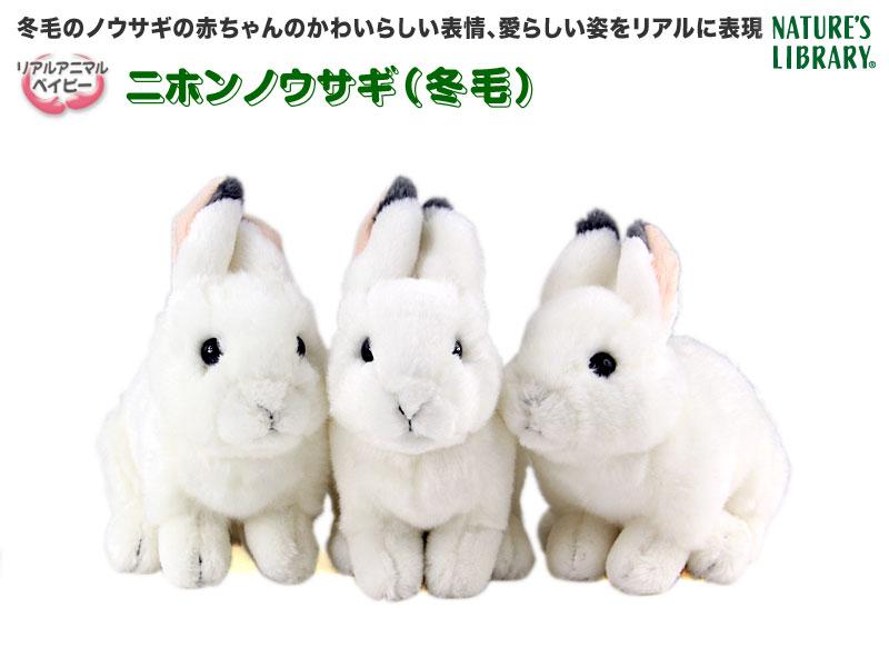 リアル動物ぬいぐるみ リアルアニマルベイビー ニホンノウサギ(冬毛)