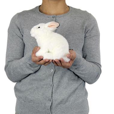 リアル動物ぬいぐるみ リアルアニマルベイビー ニホンノウサギ(冬毛) 大きさ