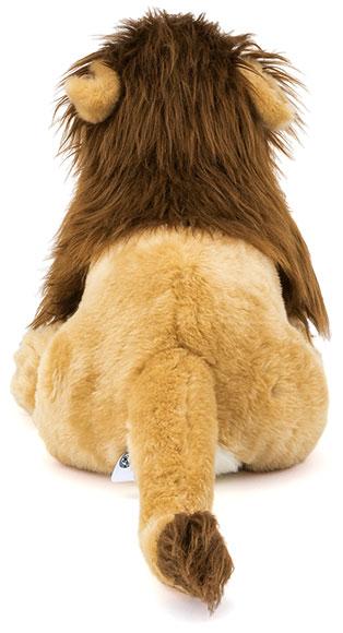 ライオン 親オス 特徴