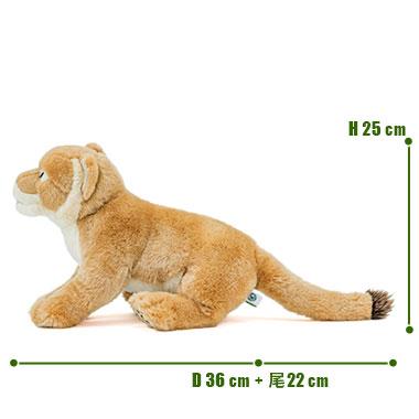 リアル 動物 生物 ぬいぐるみ リアルアニマルファミリー ライオン 親 メス サイズ