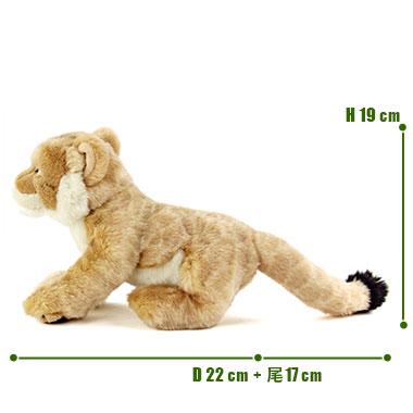 リアル 動物 生物 ぬいぐるみ リアルアニマルファミリー ライオン 子 サイズ