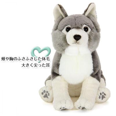 オオカミ ぬいぐるみ 特徴〜頬や胸のふさふさした体毛、大きく尖った耳