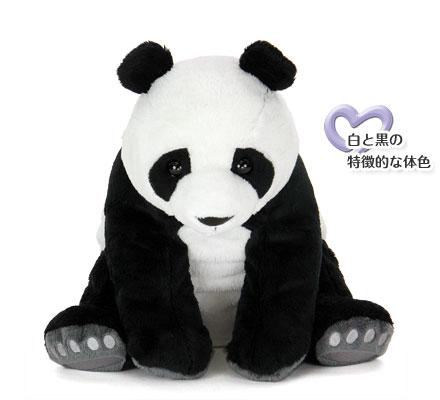 ジャイアントパンダ ぬいぐるみ 特徴〜白と黒の特徴的な体色