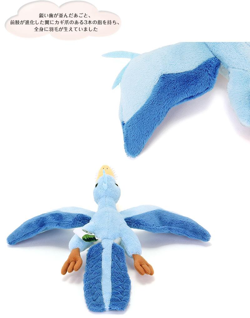 アーケオプテリクス(始祖鳥) 特徴