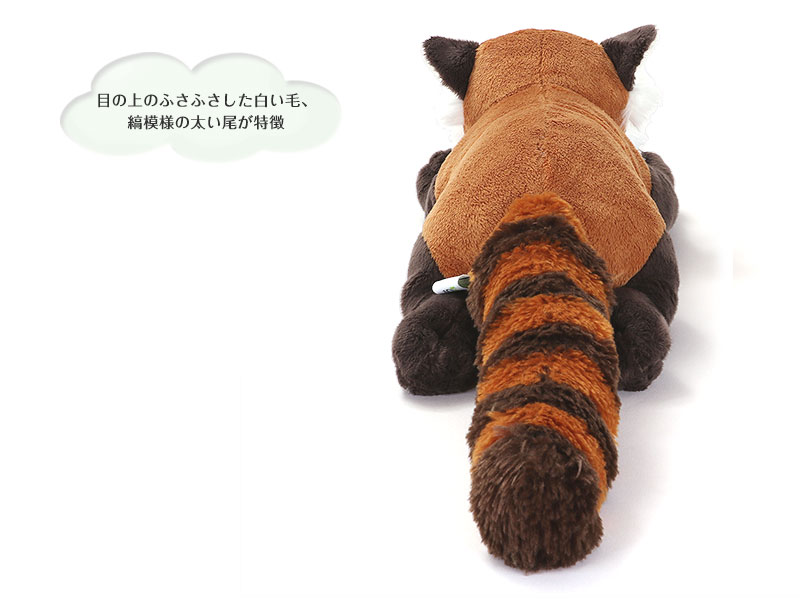 リアル動物ぬいぐるみ ねそべりシリーズ レッサーパンダ Lサイズぬいぐるみ 特徴