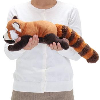リアル動物ぬいぐるみ ねそべりシリーズ レッサーパンダ Lサイズ 大きさ