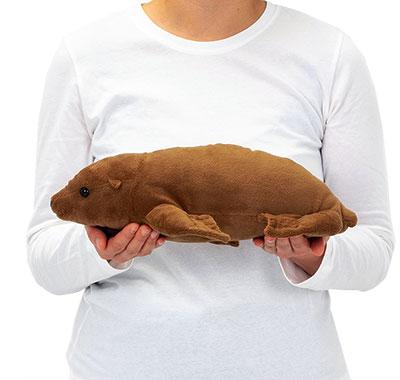 リアル動物ぬいぐるみ ねそべりシリーズ アシカ Lサイズ 大きさ