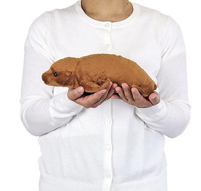 リアル動物ぬいぐるみ ねそべりシリーズ アシカ 大きさ