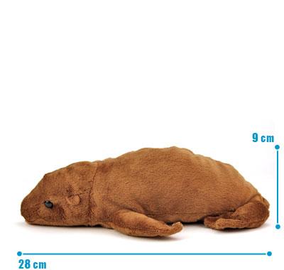 リアル動物ぬいぐるみ ねそべりシリーズ アシカ サイズ