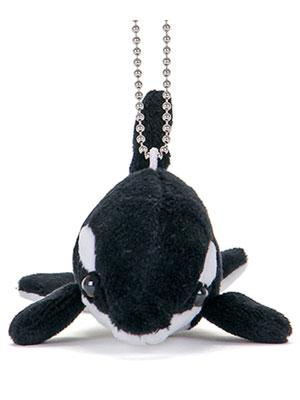 海の生物 ぬいぐるみマスコット シャチ 正面
