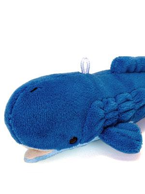 マッコウクジラ 特徴