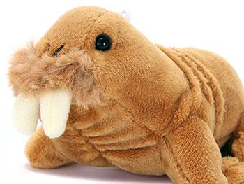海の生物 ぬいぐるみマスコット セイウチ 使用イメージ