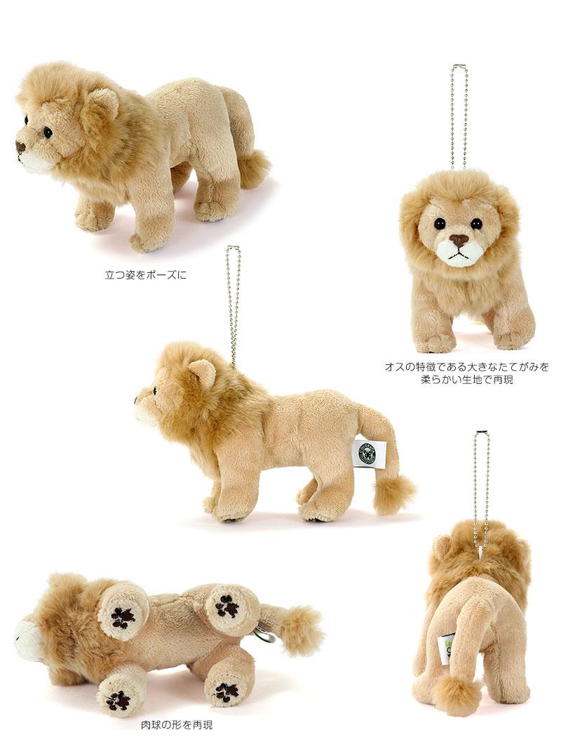 リアル野生動物 マスコット ライオン 特徴