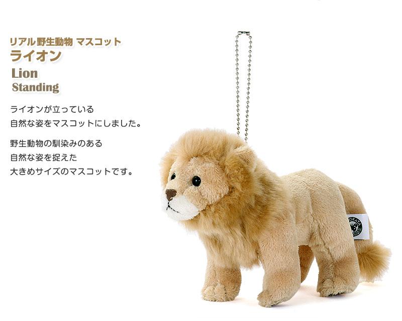 リアル野生動物 マスコット ライオン