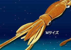 リアル 動物 生物 ぬいぐるみ ダイオウイカ Mサイズ