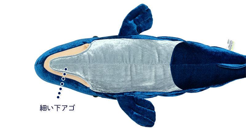 リアル動物 生物ぬいぐるみ マッコウクジラ 特徴