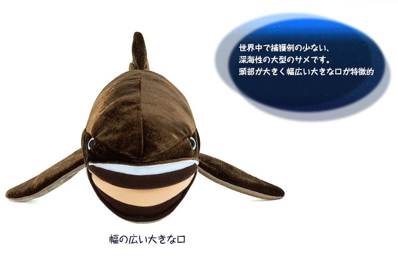メガマウスザメの特徴