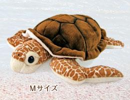 リアル 動物 生物 ぬいぐるみ アカウミガメ Mサイズ
