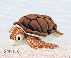 リアル 動物 生物 ぬいぐるみ アカウミガメ Sサイズ