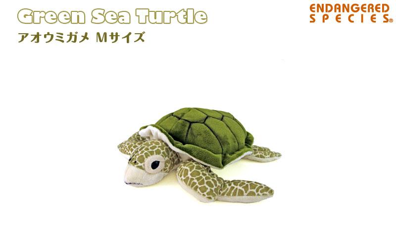 リアル 動物 生物 ぬいぐるみ アオウミガメ Mサイズ