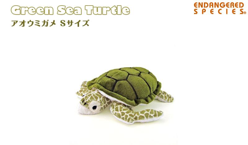 リアル 動物 生物 ぬいぐるみ アオウミガメ Sサイズ