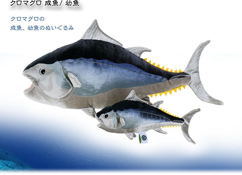 アル 動物 生物 ぬいぐるみ クロマグロ 幼魚 / 幼魚