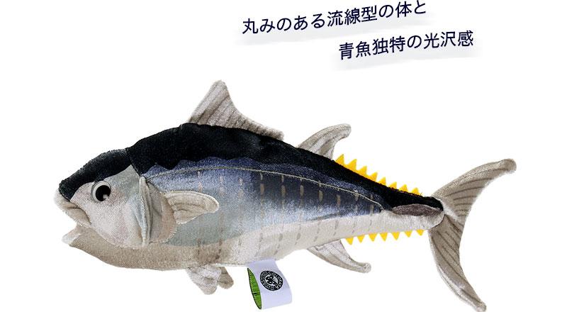 クロマグロ 幼魚