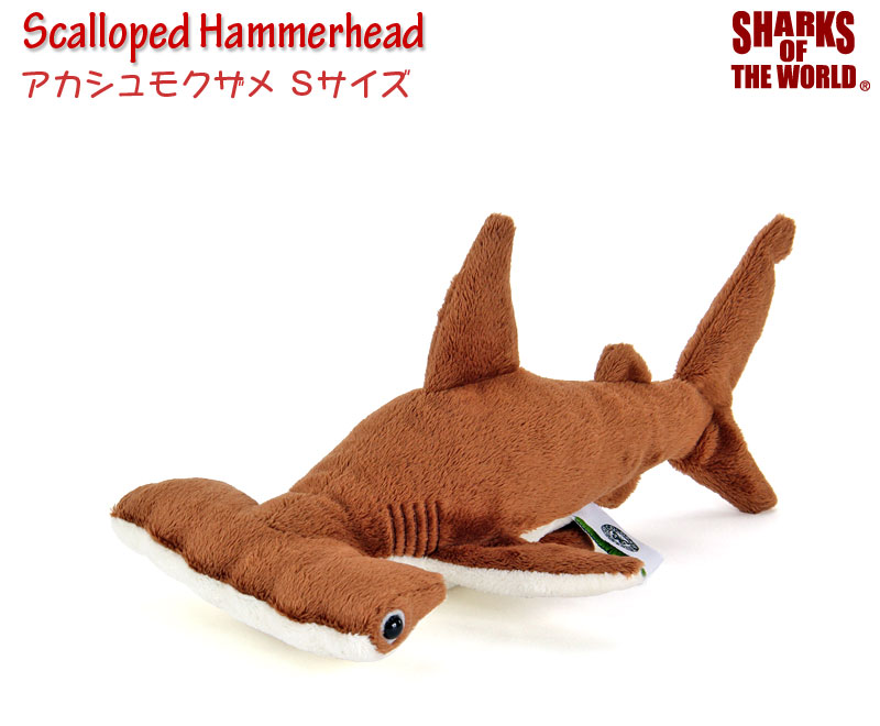リアル動物 生物ぬいぐるみ アカシュモクザメ Sサイズ