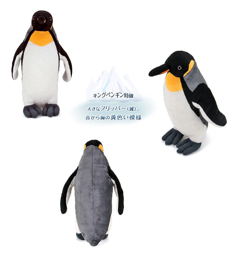 リアル動物 生物 ぬいぐるみ キングペンギン 特徴