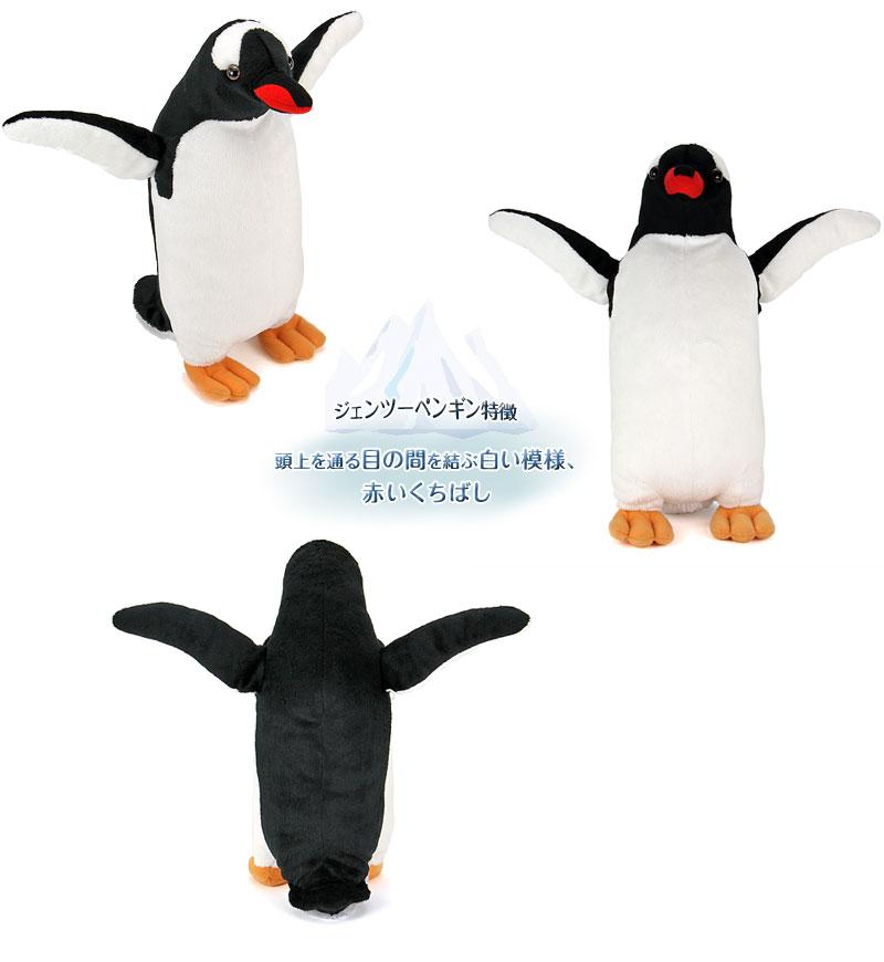 リアル動物 生物 ぬいぐるみ ジェンツーペンギン 特徴