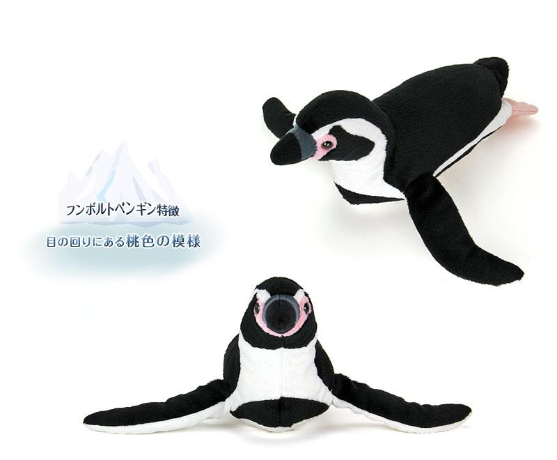リアル動物 生物 ぬいぐるみ フンボルトペンギン 特徴