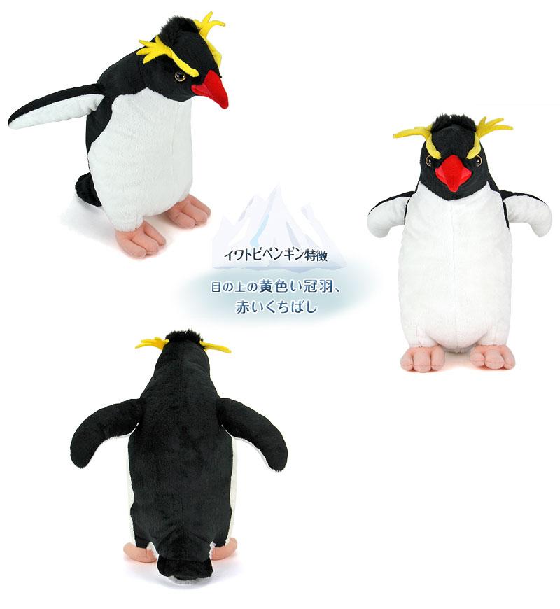 リアル動物 生物 ぬいぐるみ イワトビペンギン 特徴