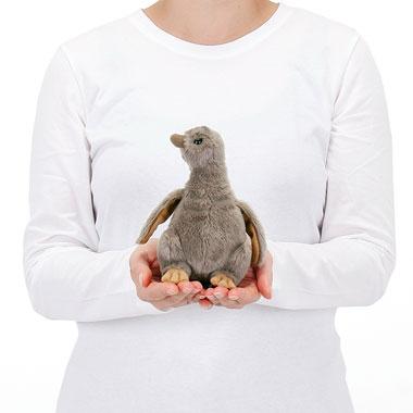 リアル 動物 生物 ぬいぐるみ フンボルトペンギン ヒナ 大きさ