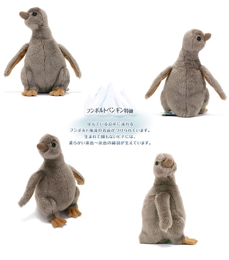 リアル動物 生物 ぬいぐるみ フンボルトペンギン ヒナ 特徴