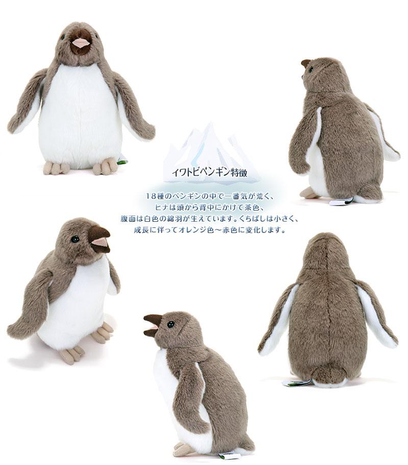 リアル動物 生物 ぬいぐるみ イワトビペンギン ヒナ 特徴