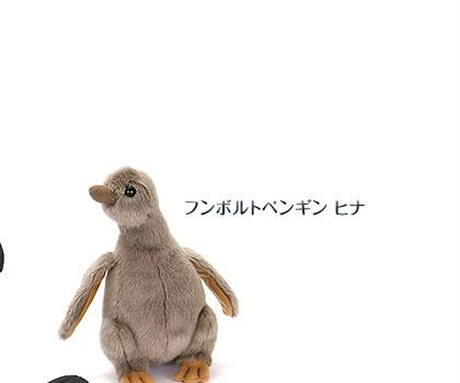 リアル動物 生物 ぬいぐるみ フンボルトペンギン ヒナ