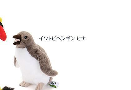 リアル動物 生物 ぬいぐるみ イワトビペンギン ヒナ