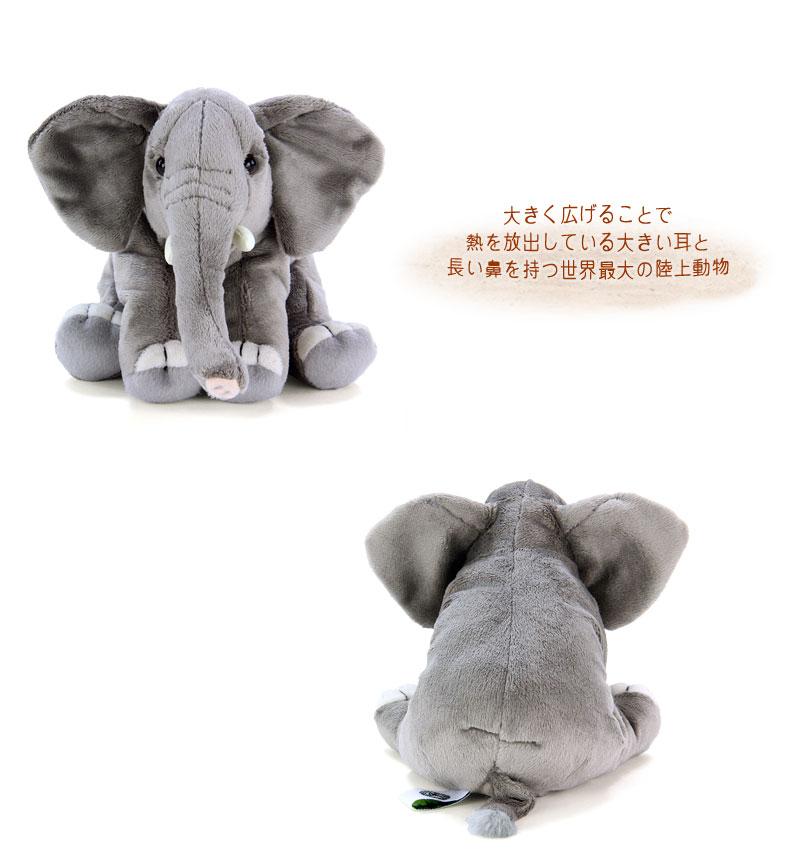 リアル 動物 生物 ぬいぐるみ おすわりシリーズ アフリカゾウ