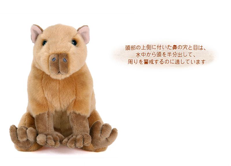 リアル 動物 生物 ぬいぐるみ おすわりシリーズ カピバラ