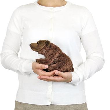 リアル動物ぬいぐるみ おすわりシリーズ ヒグマ 大きさ