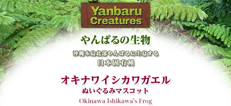リアル 生物 動物 ぬいぐるみマスコット やんばるの生物 オキナワイシカワガエル